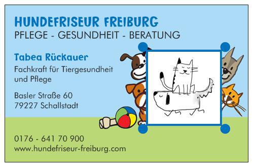 Hundefriseur-Freiburg.jpeg