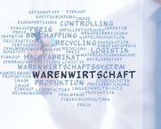 Warenwirtschaftssystem-Onlineshop